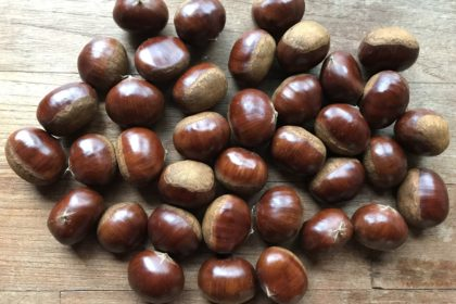 Chestnuts, nuts of fansasy.
